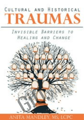 Cultural and Historical Traumas: Invisible Barriers to Healing and Change - Anita Mandley