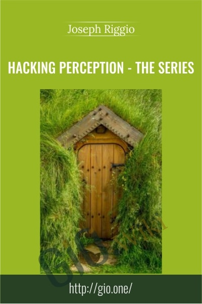 Hacking Perception – The Series - Joseph Riggio