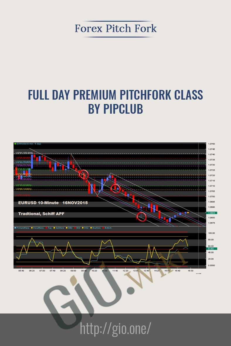 Full Day Premium Pitchfork Class by PipClub - Forex Pitch Fork