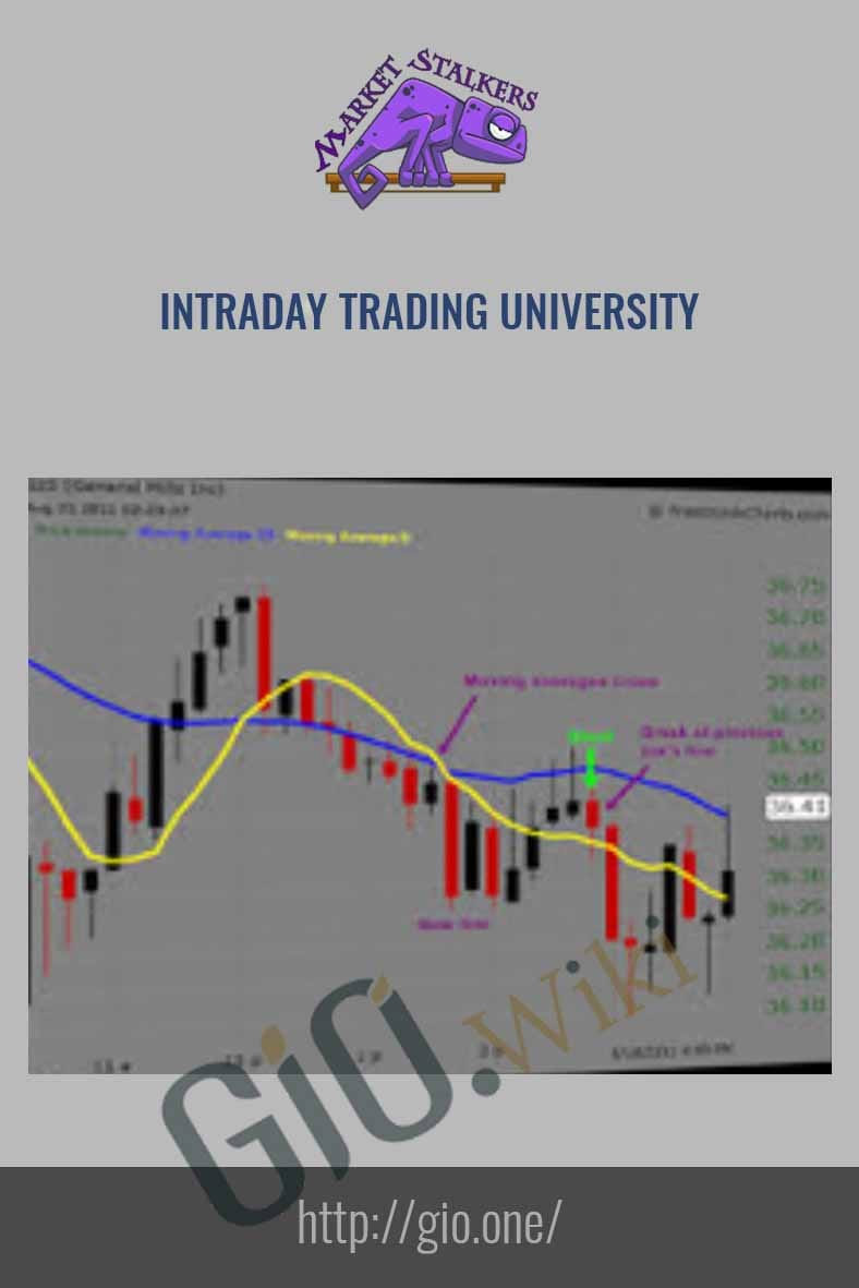 Intraday Trading University - Market Stalkers