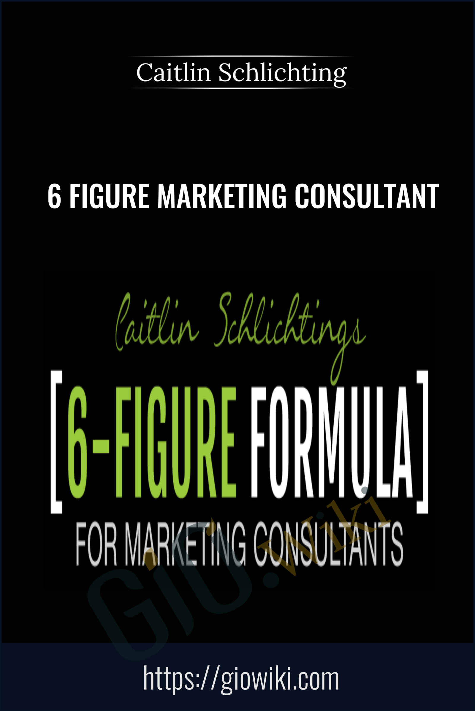 6 Figure Marketing Consultant - Caitlin Schlichting