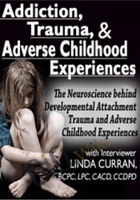 Addiction, Trauma, & Adverse Childhood Experiences (ACEs):The  Neuroscience behind Developmental/Attachment Trauma and Adverse Childhood Experiences