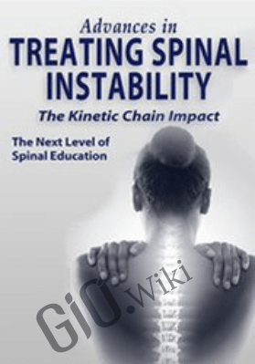 Advances in Treating Spinal Instability: The Kinetic Chain Impact - Sue DuPont