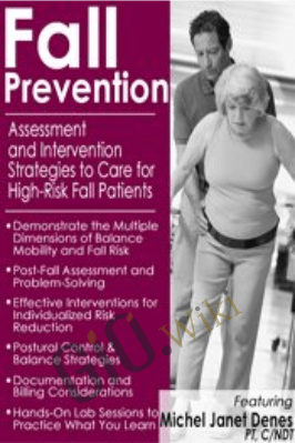 Fall Prevention: Assessment and Intervention Strategies to Care for High-Risk Fall Patients - Michel Janet (Shelly) Denes