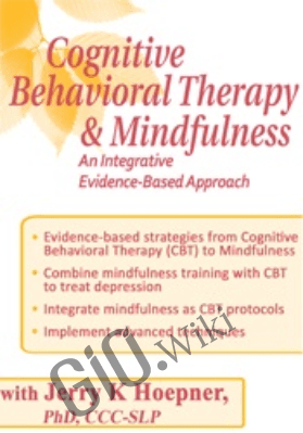 Cognitive Rehabilitation: Therapeutic Strategies for Effective Intervention - Jerry Hoepner