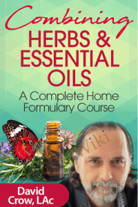 Combining Herbs & Essential Oils - David Crow