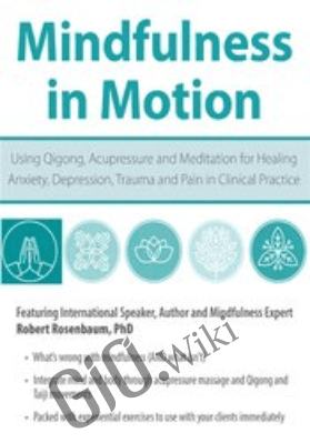 Mindfulness in Motion: Using Qigong, Acupressure and Meditation for Healing Anxiety, Depression, Trauma and Pain in Clinical Practice - Robert Rosenbaum
