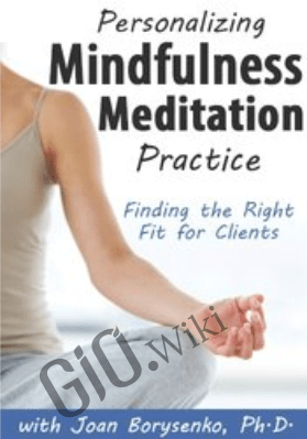 Personalizing Mindfulness Meditation Practice: Finding the Right Fit for Clients - Joan Borysenko
