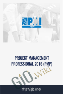 Project Management Professional 2016 (PMP)