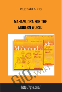 Mahamudra for the Modern World – Reginald A Ray