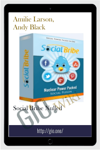 Social Bribe Nulled - Amilie Larson, Andy Black
