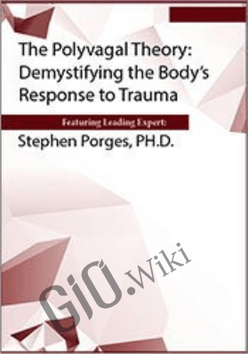 The Polyvagal Theory: Demystifying the Body's Response to Trauma - Stephen Porges