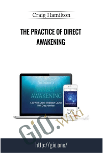 The Practice Of Direct Awakening - Craig Hamilton