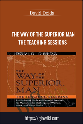 The Way of The Superior Man The Teaching Sessions - David Deida
