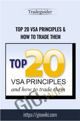 Top 20 VSA Principles & How to Trade Them - TradeGuider