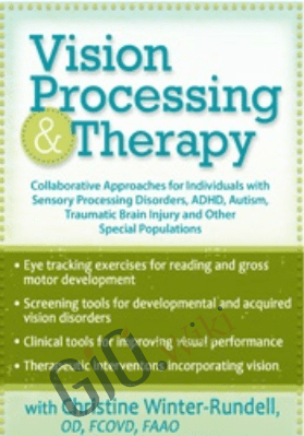 Vision Processing & Therapy: Collaborative Approaches for Individuals with Sensory Processing Disorders, ADHD, Autism, Traumatic Brain Injury & Other Special Populations - Christine Winter-Rundell