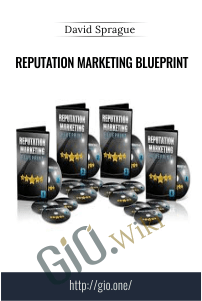 Reputation Marketing Blueprint – David Sprague