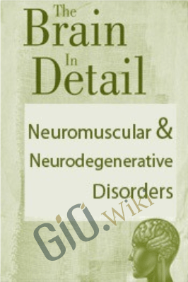 The Brain in Detail: Neuromuscular & Neurodegenerative Disorders - Bonita Gordon & Sean G. Smith