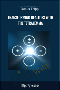 Transforming Realities with The Tetralemma – James Tripp