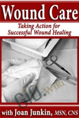Wound Care: Taking Action for Successful Wound Healing - Joan Junkin