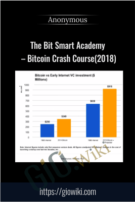 The Bit Smart Academy – Bitcoin Crash Course(2018)