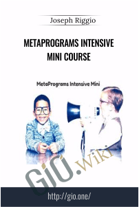 MetaPrograms Intensive Mini Course – Joseph Riggio