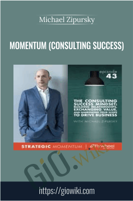 Momentum (Consulting Success) - Michael Zipursky