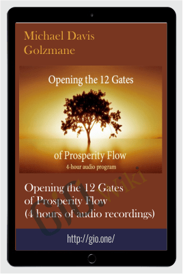 Opening the 12 Gates of Prosperity Flow (4 hours of audio recordings) - Michael Davis Golzmane