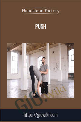 Push - Handstand Factory