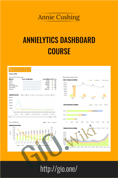 Annielytics Dashboard Course - Annie Cushing