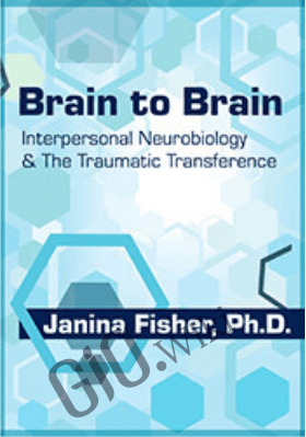 Brain to Brain: Interpersonal Neurobiology & The Traumatic Transference - Janina Fisher