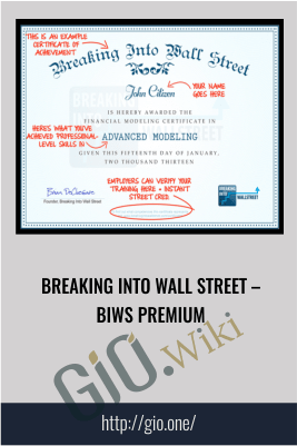 Breaking into Wall Street – BIWS Premium