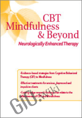 CBT, Mindfulness, and Beyond: Neurologically Enhanced Therapy - Kate Cohen-Posey