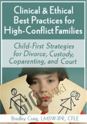 Clinical & Ethical Best Practices for High-Conflict Families: Child-First Strategies for Divorce, Custody, Coparenting, and Court