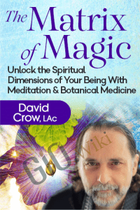 The Matrix of Magic - David Crow, LAc