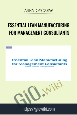Essential Lean Manufacturing for Management Consultants - Asen Gyczew