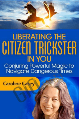 Liberating the Citizen Trickster in You - Caroline Casey