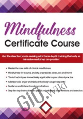 Mindfulness Certificate Course: 2-Day Intensive Training - Terry Fralich
