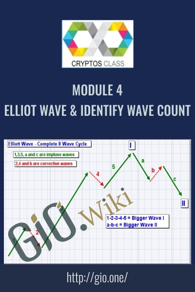 Module 4 All Elliot Wave & Identify Wave Count