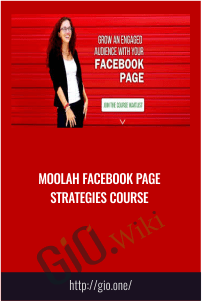 Moolah Facebook Page Strategies course