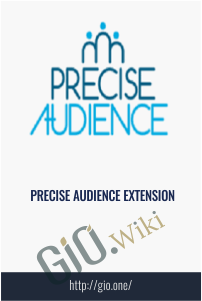 Precise Audience Extension