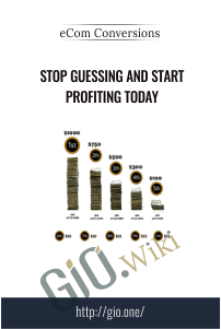 Stop Guessing and Start Profiting Today – eCom Conversions
