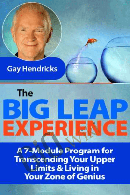 The Big Leap Experience - Gay Hendricks