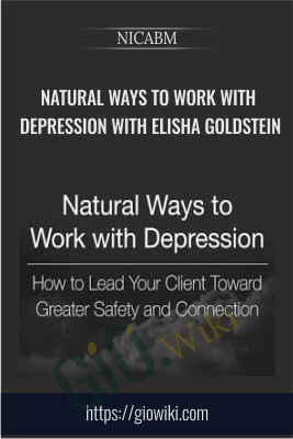 Natural Ways to Work with Depression with Elisha Goldstein - NICABM
