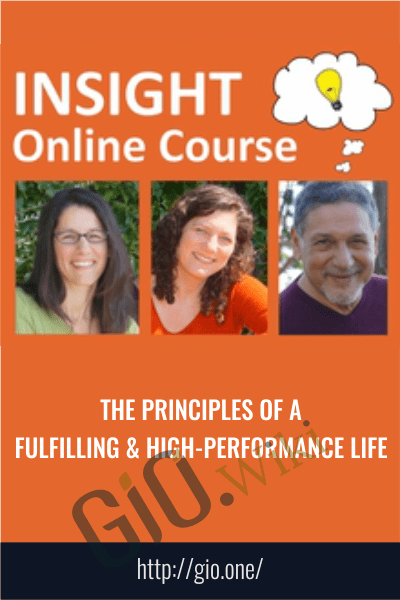The Principles of a Fulfilling & High-Performance Life -  InSight