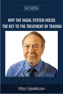 Why the Vagal System Holds the Key to the Treatment of Trauma - NICABM