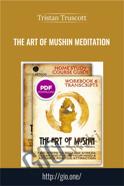 The Art of Mushin Meditation Course - Tristan Truscott