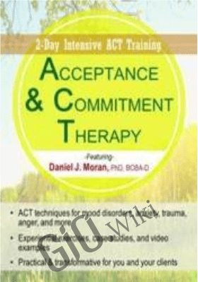 Acceptance & Commitment Therapy: 2-Day Intensive ACT Training - Daniel J Moran