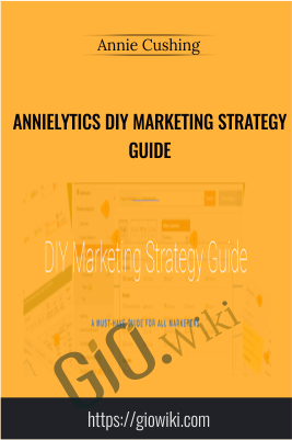 Annielytics DIY Marketing Strategy Guide - Annie Cushing