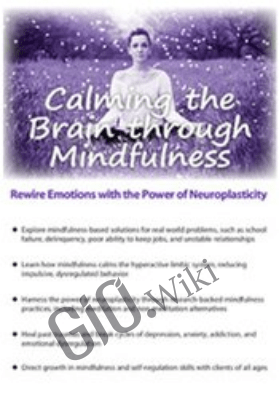 Calming the Brain through Mindfulness: Rewire Emotions with the Power of Neuroplasticity - Mark L. Beischel